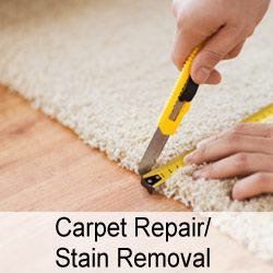 Carpet Repair/Stain Removal